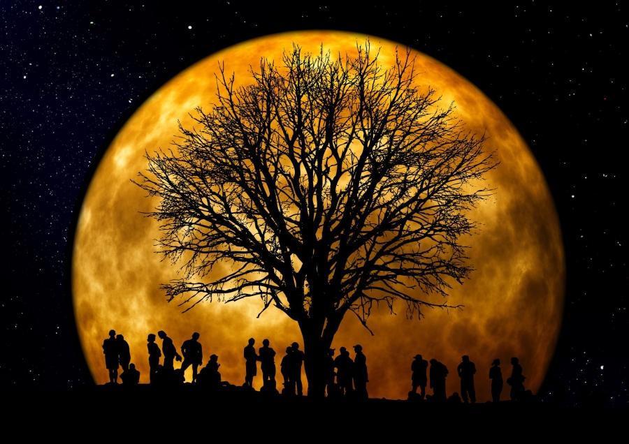 Caminada Llum de la Lluna Llagostera