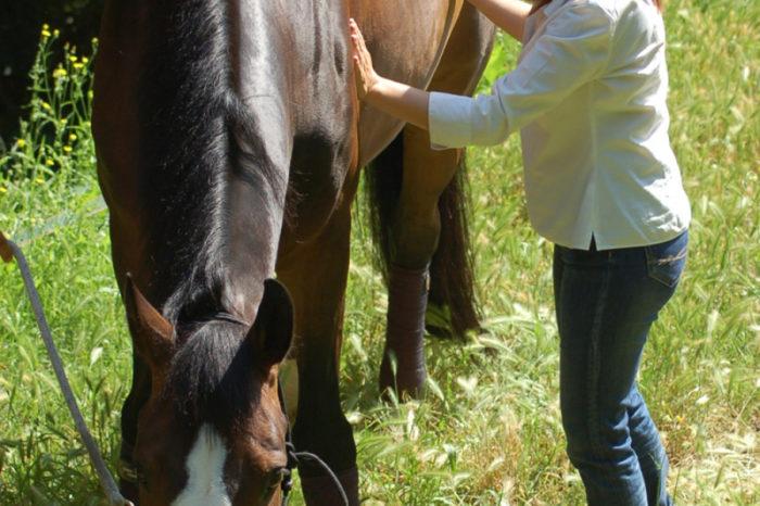 Seminari dedicat a l'ABRT (Animal Brain Release Technique) a Llagostera